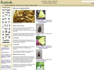 Bug Guide screen shot