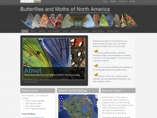 Butterflies and Moths screen shots