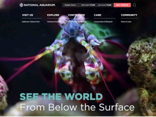 National Aquarium in Baltimore screen shot