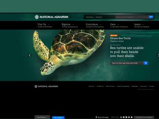 National Aquarium in Baltimore screen shot