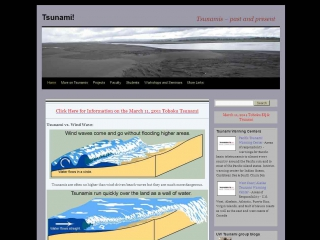 Tsunami! website screen shot