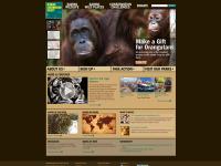 Bronx Zoo screen shot